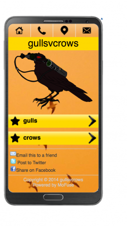 Gulls v Crows — Exposition, Goton Paris